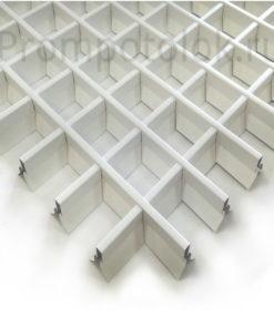 piramidalnyj-belyj